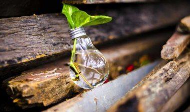 Premiu de 25.000 de euro pentru afacerile care recicleaza resurse