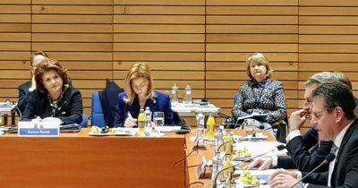 Rovana Plumb: Romania acorda o importanta deosebita negocierilor privind viitorul Cadru Financiar Multianual si propunerilor legislative sectoriale conexe, in special cele privind coeziunea si agricultura