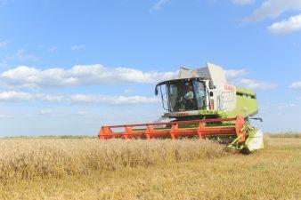 APIA demarează Campania de plată în avans a fermierilor