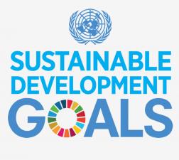 Comisia prezinta un document de reflectie privind o Europa mai durabila pana in 2030