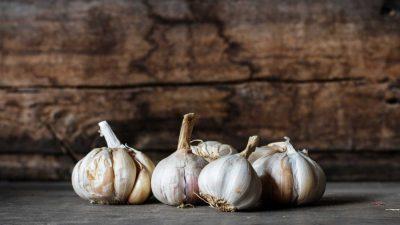 MADR: Cultivatorii de usturoi vor beneficia de sprijin începând din acest an