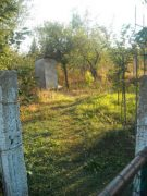 image-2012-11-16-13625989-46-tara.jpg