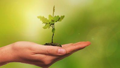 Ministerul Agriculturii din Ungaria finanţează consilierea fermierilor din Harghita, Covasna şi Mureş