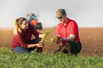 Programul Sprijin pentru instalarea tinerilor fermieri