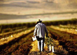 Prime nerambursabile de pana la 20.000 euro in fiecare an pentru producatorii agricoli incepand cu ianuarie 2021