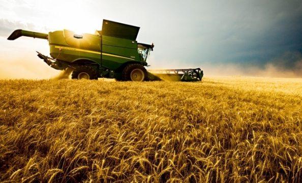 formularul-087-pentru-aplicarea-regimului-special-de-catre-agricultori-a1446.jpg