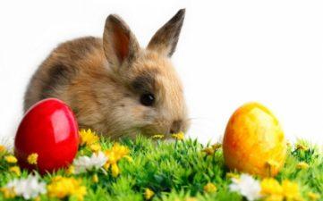 Prime de Paște fără taxe